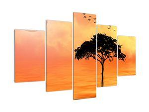 Obraz stromu v západu slunce (V020480V150105)