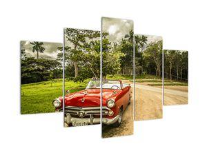 Kép - autó, veterán a természetben (V020506V150105)