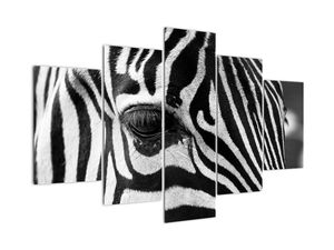 Tablou cu zebră (V020518V150105)