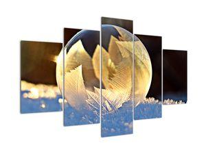 Tablou cu bulină înghețată (V020519V150105)