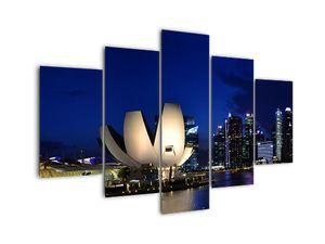 Tablou Singapore nocturn (V020610V150105)