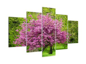 Obraz rozkvetlého stromu na louce (V020654V150105)