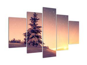 Obraz zasněženého stromu na louce (V020701V150105)
