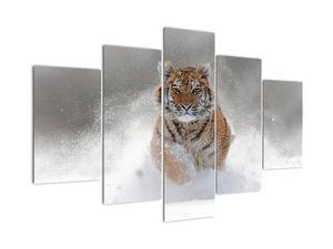 Futó tigris a hóban képe (V020719V150105)