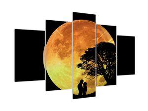 Obraz stínů v měsíčním světle (V020819V150105)