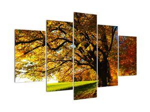 Obraz podzimního stromu (V020838V150105)