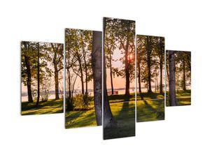 Obraz stromů u jezera (V020839V150105)