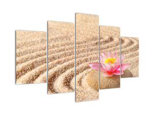 Egy kő, virággal a homokban képe (V020864V150105)