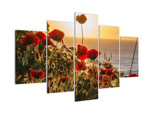Tablou cu apus de soare cu flori de maci (V020877V150105)