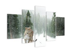 Obraz leoparda v snehu (V020880V150105)