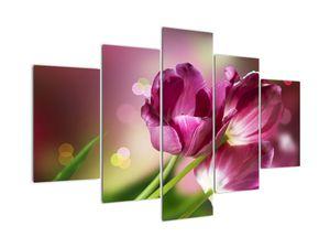Rózsaszín tulipánok képe (V020887V150105)