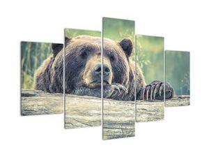 Slika medvjeda (V020899V150105)