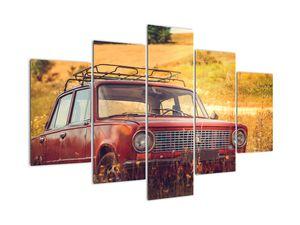 Tablou cu mașină în câmp (V020906V150105)