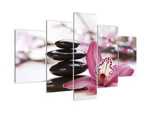 Masszázs kövek és orchideák képe (V020910V150105)