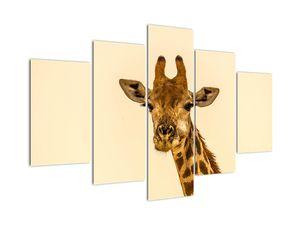 Obraz žirafy (V020914V150105)