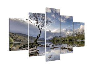 Obraz řeky se stromem (V020917V150105)