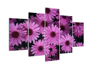Obraz ružových kvetov (V020923V150105)