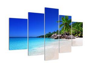 Tablou cu  plaja pe insula Praslin (V020936V150105)