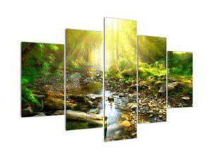 Slika rijeke u zelenoj šumi (V020942V150105)