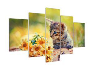 Obraz mačiatka pozerajúce sa na kvetinu (V020943V150105)