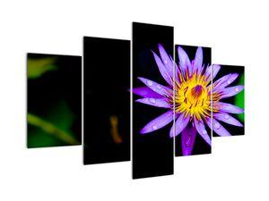 Virágos kép (V021017V150105)