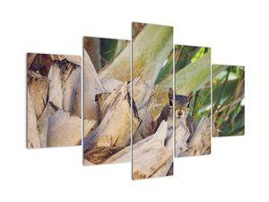 Obraz veverky na stromu (V021177V150105)