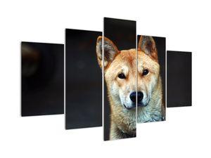 Tablou cu câine (V021189V150105)