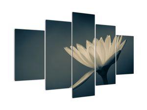 Tablou cu flori (V021223V150105)