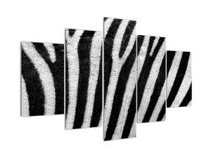 Obraz kůže zebry (V021235V150105)