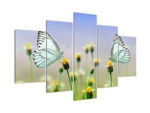 Tablou cu fluture pe floare (V021248V150105)