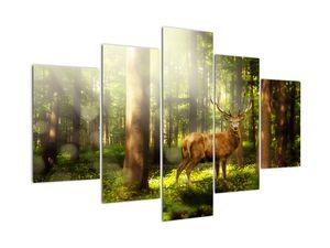 Slika jelena u šumi (V021263V150105)