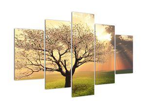 Slika stabla na livadi (V021277V150105)