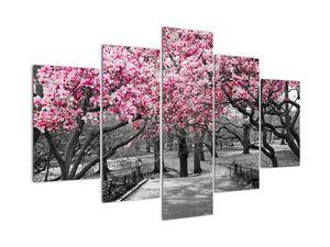Slika drveća magnolije (V021344V150105)
