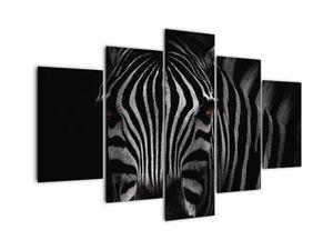 Slika zebre (V021389V150105)