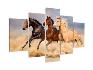 Slika - Divlji konji (V021450V150105)