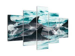 Obraz - Delfíni v oceáně (V021515V150105)