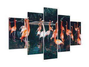 Tablou - turmă de flamingo (V021626V150105)