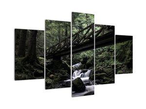 Obraz z černého lesa (V021686V150105)