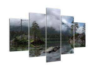 Slika drveća u jezeru (V021702V150105)