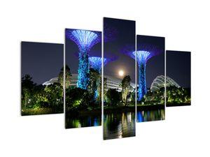 Slika polne lune v Singapurskih vrtovih (V021710V150105)