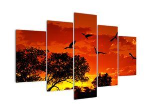 Madarak képe naplementekor (V021911V150105)