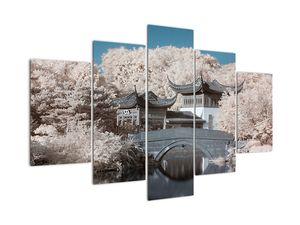 Obraz - Rozkvetlé stromy v Asii (V021917V150105)