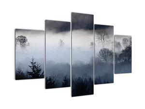 A köd képe az erdő felett (V021947V150105)