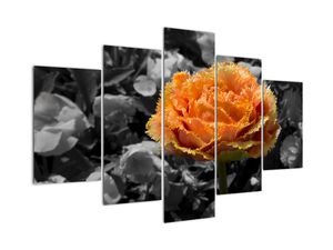 Tablou  cu floare (V021950V150105)