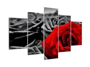 Tablou - Flori de trandafir (V021975V150105)