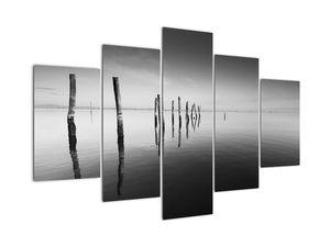 Obraz černobílé vodní hladiny (V022032V150105)