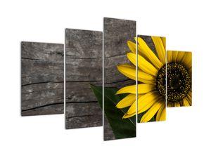 Tablou - Floare de floarea soarelui (V022113V150105)