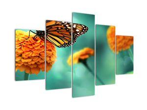 Obraz motýľa (V022134V150105)