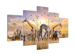Kép - Afrikai állatok (V022143V150105)