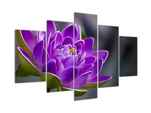 Obraz kvetu (V022204V150105)